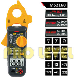 4000 Counts Digital AC & DC Clamp Meter (MS2160) pictures & photos
