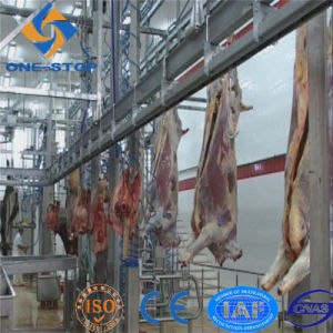 Cattle Abattoir Process Line Machinery with SGS Certified