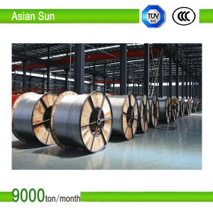 ACSR Conductor Aluminum Conductor Steel Reinforced pictures & photos