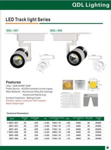 20W COB Sharp Track Light Qdl-307