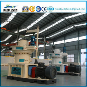 Large Scale Ring Die Vertical Dobule Sizes Grass Wood Sawdust Alfalfa Bamboo Granulate Machine Plant Machinery Price