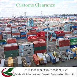 Global Shipping Container Logistics Companies Sea Freight