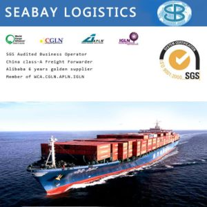 China Cheapest Container Shipping/Shipping Charges/Shipping