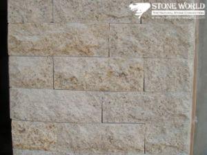 Yellow Granite Tiles For Outdoor Walls CS096