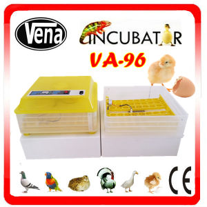 Hot Sale New Style 96 Egg Small Incubator pictures & photos
