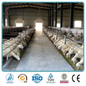 China Prefab Steel Structure Design Goat Sheep Cattle Farming House