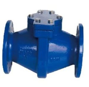 Ductile Iron Simple Design Straight Flow Strainer pictures & photos