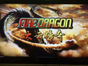 The Fire Dragon Fish Hunter Coin Operated Game Machine Slot Game Igs