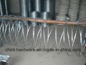 Cheap! Hot-Dipped/ Electric Galvanized Double Twist Barbed Wire pictures & photos