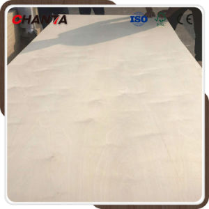 Birch Plywood C2. B2 Grade for Mexico Market