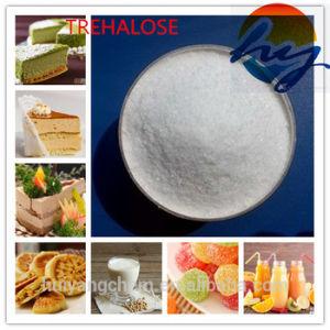 45% of Sugar Sweet as Food Ingredients Trehalose Supplier