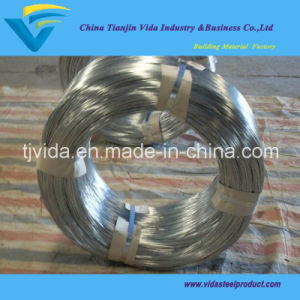 Hot Dipped Galvanized Amour Wire with Good Quality