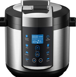 Multifunction Electric Pressure Cooker with Deep Fryer Wsh-100V pictures & photos