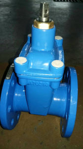 Pn 16 Non-Rising Resilient Seated Gate Valve pictures & photos