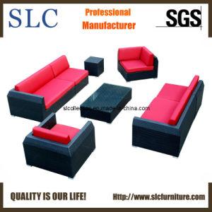 Outdoor Furniture/Waterproof Sofa/ Different Sofa Shapes (SC B6018 B)