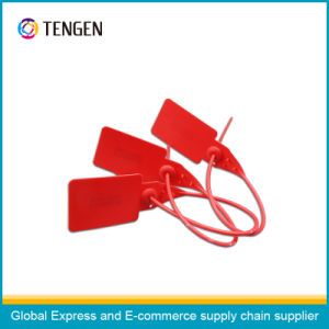 Plastic Packing Security Seal Type 10