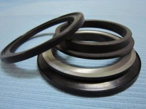 Mechenical Part Seal Groups Used for Bulldozer Parts pictures & photos