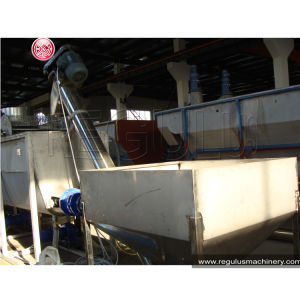 Pet Recycling Line/ Plastic Pet Recycling Plant pictures & photos