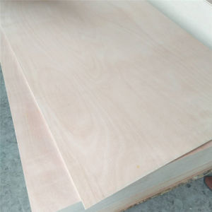 Poplar Core Okume Plywood of BB/CC Faced for Commercial and Furniture