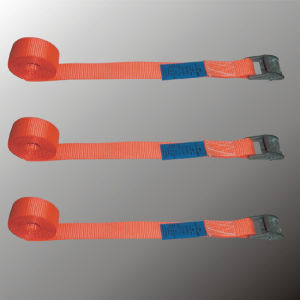 Cam Buckle Straps, Lashing Straps, Cam Buckle Lashing pictures & photos