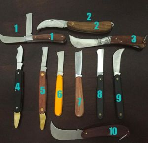 Grafting Knife Budding
