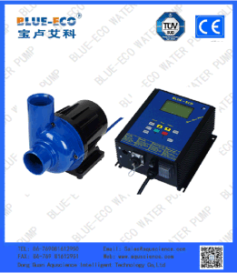 Low Pressure High Performance Fish Farm Electricity Pond Pump