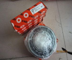 FAG Cylinderical Roller Bearing (Nu2219)