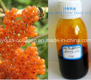 China GMP,EU 100%Organic Wild Sea Buckthorn/Hippophae Oil