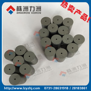 Sintered Blank Cemented Carbide Cold Punching Die