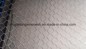 Hexagonal Wire Netting From Kdl