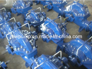 Double Suction Pump pictures & photos