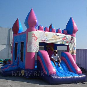 Inflatable Castle (B3053) pictures & photos