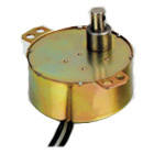 Synchronous Motor (49TYD-838OR888)