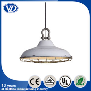 Loft Industrial Iron Single Headed Electroplating Retro Hanging Lamps