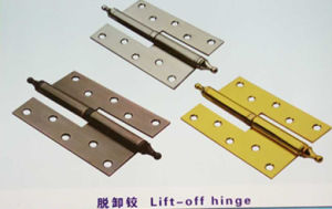 H Type Egypt Hinges Can Be Plug in Accept Customize pictures & photos