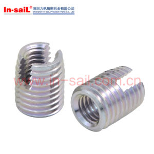 Self-Tappping Fastener for The Creation of Wear-Free, Vibration-Resistant Screw pictures & photos