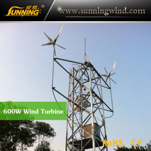 Protable Camping Wind Turbine Generator for Wind Solar Power System (MAX 600W)