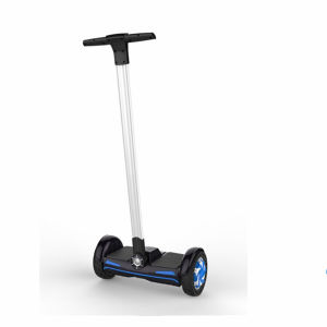 Adult Two Wheels Mini Electric Chariot Scooter