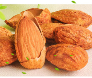 Yummy Nuts Snack Food Almonds in China for Wholesale
