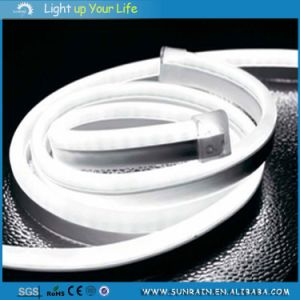 LED Night Holiday Rope Light pictures & photos