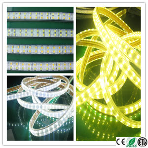 Bet High Brightness 230 Volt Double Row LED Strip pictures & photos