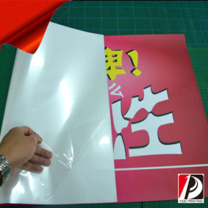 PVC Vinyl Self-Adhesive Poster (SEL-01) pictures & photos