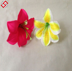 China Color Lily, Color Lily Manufacturers, Suppliers, Price