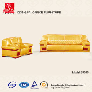 High Density Foam Sofa Set (E9086)