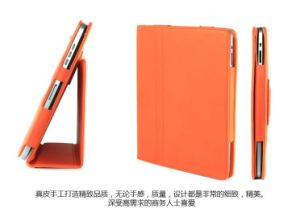 Colorful Case for iPad 2