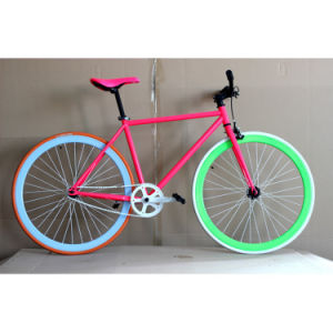 Best Seller Colorful Fixie Bike Road Bicycle (FP-FGB004) pictures & photos
