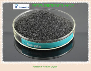 Plant Growth Agent Potassium Humate 90% Solubility pictures & photos