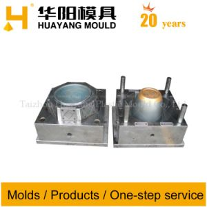 Thin Wall Flowerpot Mould (HY038) pictures & photos
