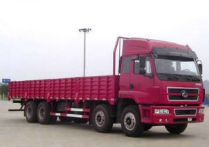 Dongfeng EQ1290W 8 X 4 Cargo Truck/Truck for Sale pictures & photos