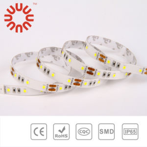 High Brightness SMD3528 SMD2835 SMD5050 SMD5630 24V Flexible LED Strip pictures & photos